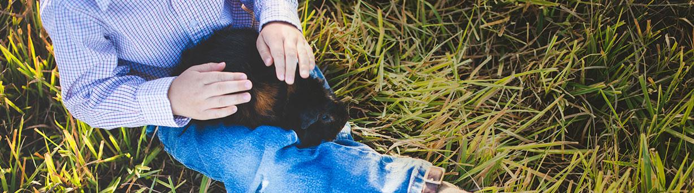 RAH-home-slider-guinea