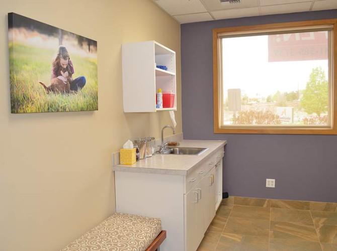 riverside-animal-hospital-exam-room