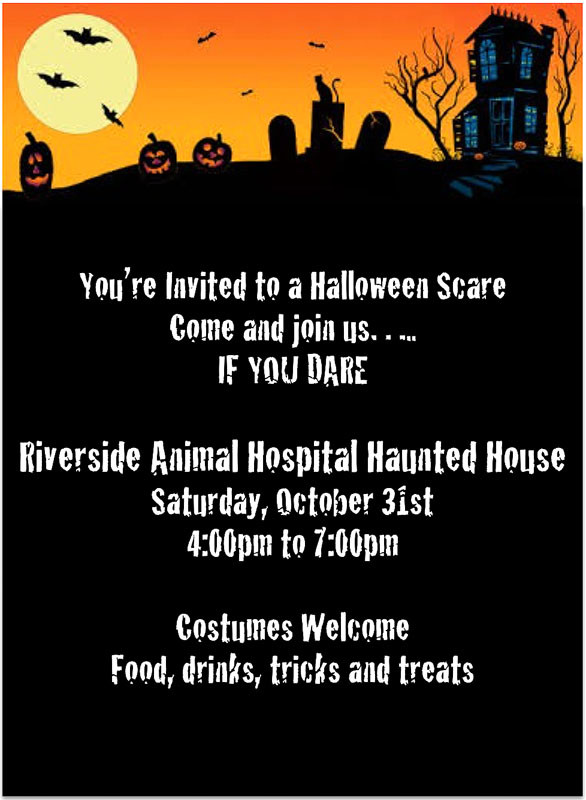 Halloween Party, Riverside Animal hospital