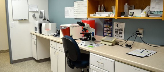 Bend Oregon Vet Clinic laboratory